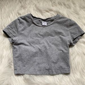 Grey fitted cropped Aritzia t-shirt